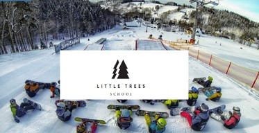 Little Trees School